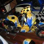 2006decduck6-150x150